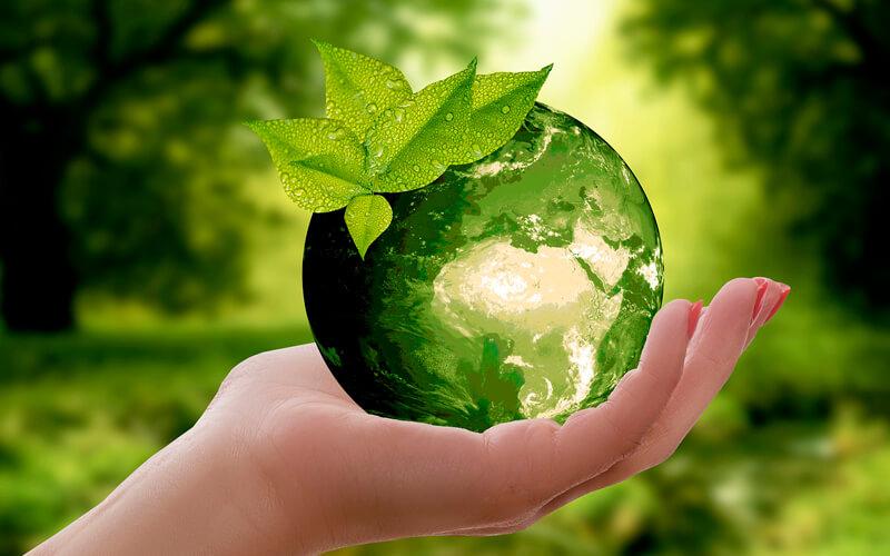 La Naturaleza. Image: Pixabay