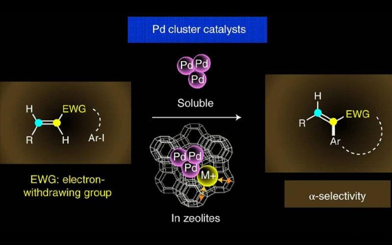 Imagen. / F. Garnes-Portolés et al.-Nature Catalysis