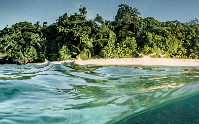 Ocean Image Bank/Amanda Cotton. / Una barrera de coral en Papua Nueva Guinea.