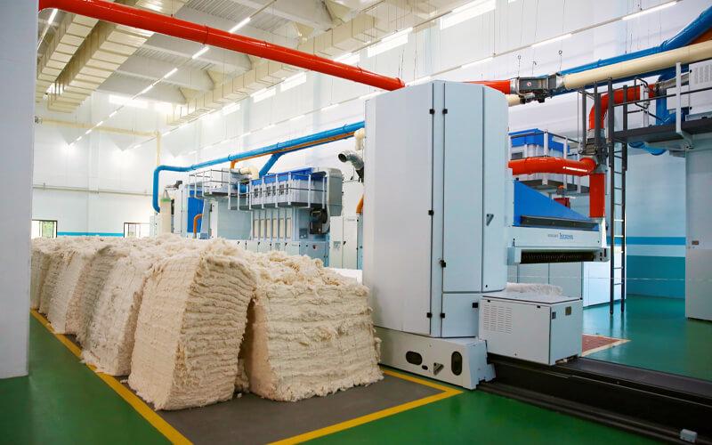 Imagen. / US Cotton