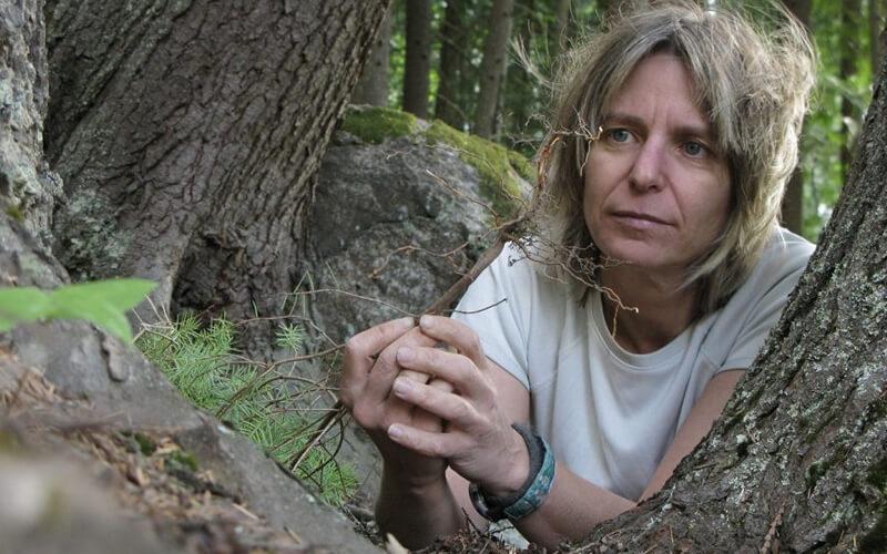 El nuevo libro de un ecologista llega a la raíz de la vida social de los árboles