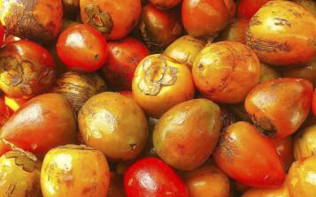 Residuos de frutas exóticas se convertirían en protectores solares