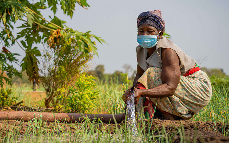 Los líderes empresariales se unen a Guterres en favor de la sostenibilidad