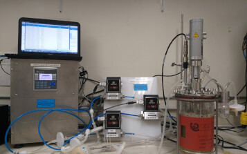 Optimizan producción de bioinsecticida a base de células del árbol de neem
